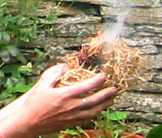 "Grass tinder ""nest"" as a reliable source of fire"