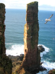 Old Man of Hoy - Orkney Islands, Scotland